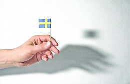 Informal Strategies: Our Swedish Neighbour