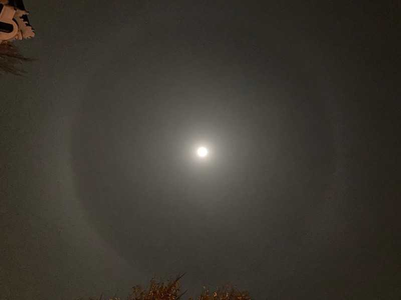Image: Blue Moon halo on 31 October 2020, Amsterdam, de Wallen. Seen at about 1am, after a 'rose-zombie' escaped from the Palazzo della Malinconia. Photo by René Boer.